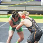 Three wrestlers qualify for state meet