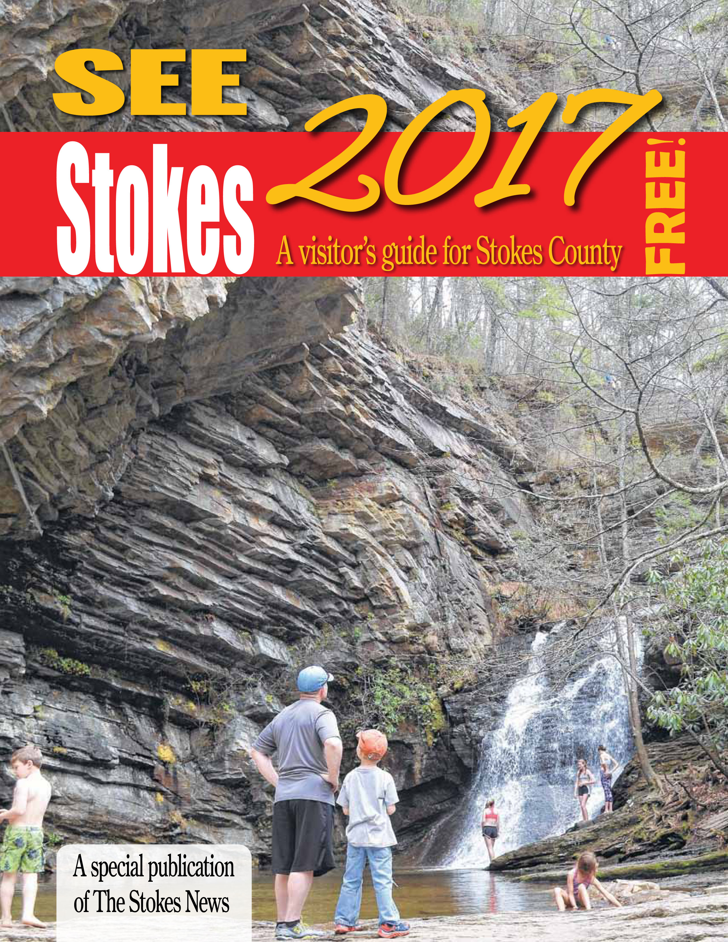See Stokes 2017